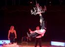 Circus-Nock-2015-6
